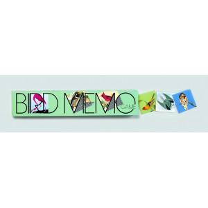 Ptáci Memo