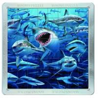 64 d. 3D Magnetické puzzle - Žraloci